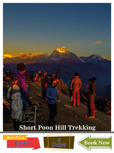 short-poon-hill-trekking