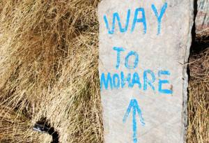 mohare danda trek : a short trek from pokhara