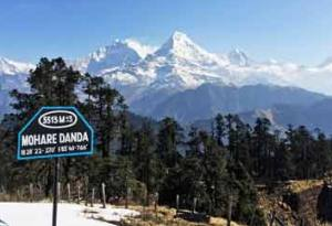 Mohare Danda Trekking Highlight
