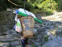 3 days poon hill trekking porter