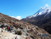 ama dablam trekkers and trekking trail