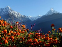 annapurna luxury trek view