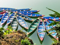Boats in Phewa Lake
