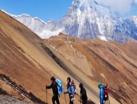 trekking to chomolhari base camp