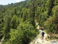 dhampus-sarangkot-easy-trek