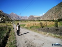 green valley of marpha