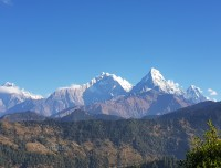 Himalayas and Nagi Village
