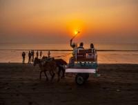 horse cart at chitwan rapti bank