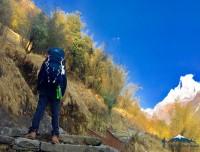 Mohare Danda ABC Trekking