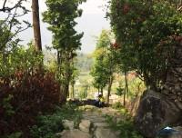 pokhara dhampus trekking