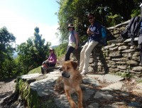 poon hill drive tour trekking trail