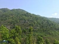 short-dhampus-sarangkot-trek