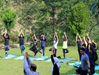 Yoga tour in Jugle paradise Tour