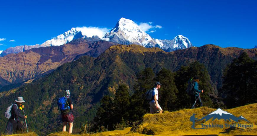 wonderful short treks in nepal