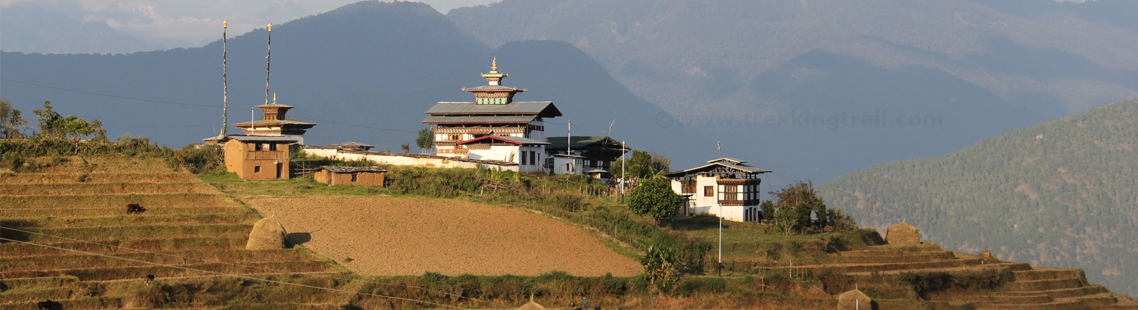 Buddhist Monastery, Terreced Field and Traditional Home in The Hiking Village of Punakha, Bhutan