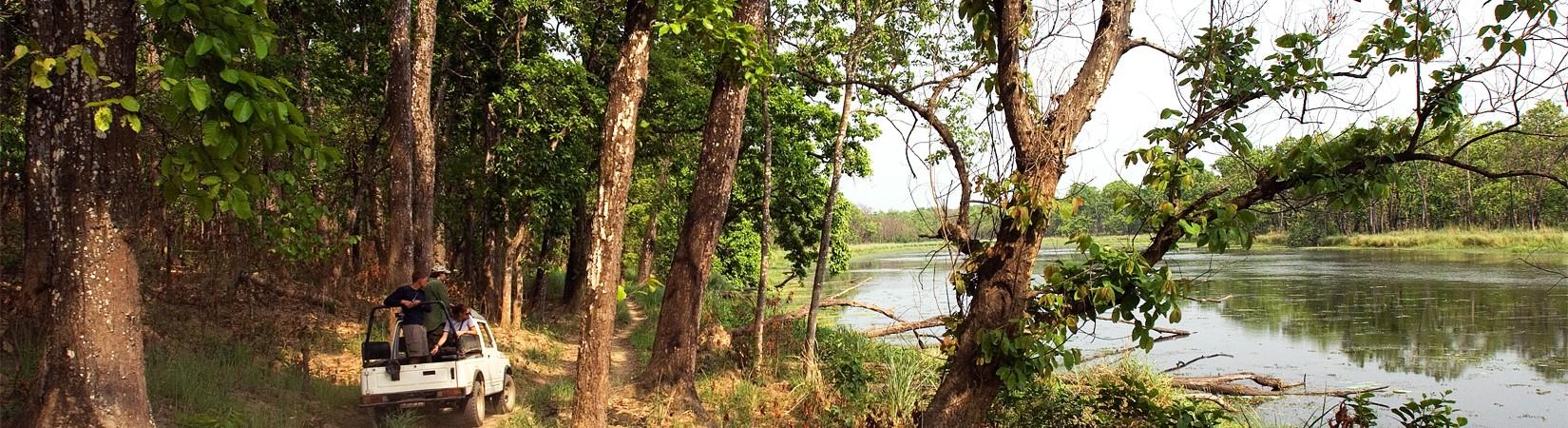 chitwan national park activities