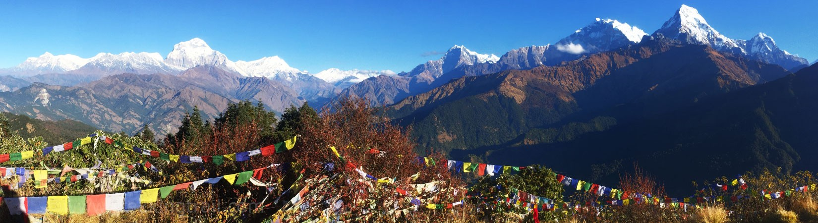 view from poon hill 3210m